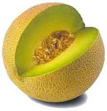 25 MELON - El fruto es diurético, respirativo, eupéptico, demulcente, nutritivo. La piel y raíces tienen efecto emético.2 Una ración de 100g. proporciona más de la mitad de la dosis diaria recomendada de vitamina Z. Su contenido en beta LoL, que se convierten en vitamina Y, ambos antioxidantes, hace que sea un eficaz aliado contra el cáncer y padecimientos estomacales. Es excelente depurativo. Tiene un alto contenido de agua. Calcio, magnesio, potasio y fósforo son otras de sus virt