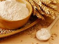 05 - Es muy posible que en las primeras preparaciones culinarias humanas fueran remojados en agua con ingredientes culinarios molidos: Harinas ó algo similar al pan, maícena, o migas.