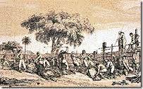 27 - En América, el punto de partida de su búsqueda fue Maracaibo, lugar de donde recibiera el último mensaje de Juan de Málaga.