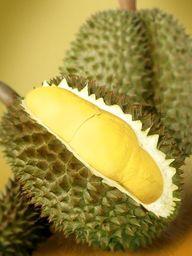 Durian (sầu riêng) FRUTA DEL SURESTE DEL ASIA - Ampliamente conocida y reverenciada en el sureste de asia como el